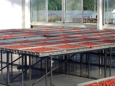 7漬け込み室2階の天日干乾燥室